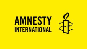 Ежегодный доклад Amnesty International раскритиковал положение дел с гражданскими свободами в РФ