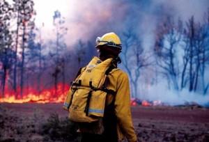 Идет набор волонтеров на курс по безопасной работе в зонах чрезвычайных ситуаций