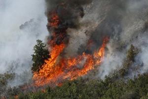 В Иркутской области вновь горят лесные массивы