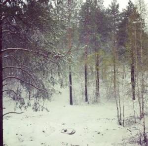 Многие россияне встретили первый день лета со снегом