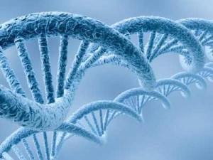 Мнение: Модификация генома человека как способ излечиться от болезней