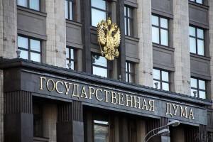Госдума не будет лишать россиян гражданства за терроризм