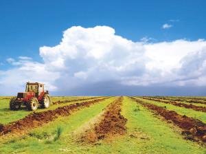 Правительство финансово поддержит сельское хозяйство