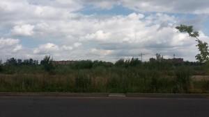 Алёна Сокольская - дольщикам: «Решите свои проблемы с помощью пистолета»