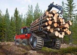 Бизнесмен Кургин Тимофей рассказал о развитии лесной промышленности России