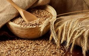 В этом году урожай зерна в России станет рекордным