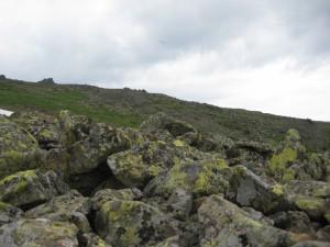 Туриста в Ергаках не бросали на произвол судьбы