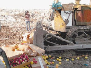 Попавшие под эмбарго продукты будут уничтожены до конца 2017 года