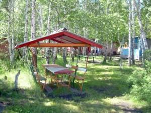 В Новгородской области после отравления детей закрыли лагерь «Олимпиец»