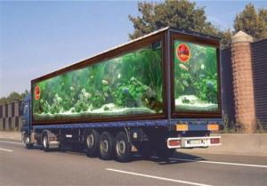 Рынок транспортной рекламы  в столице получит новое развитие