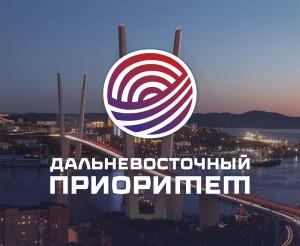 Книга Анны Акпаровой и Алексея Кордичева Дальневосточный Приоритет на ВЭФ-2016