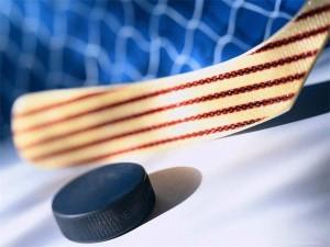 Хоккейная шайба убила арбитра из Чехии