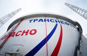 «Транснефть» изменила устав, фонд Ильи Щербовича пытается его оспорить