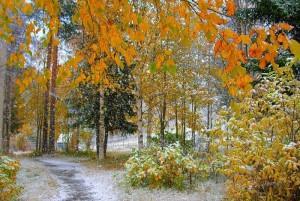 В воскресенье москвичей ждет первый снег